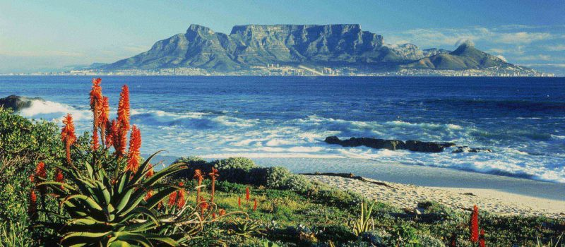 viaggio di nozze sudafrica