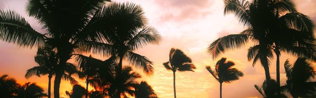 Crociera sull'Oceano Pacifico